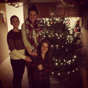 The Nest Christmas 2014